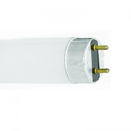 Лампа люминесцентная L 18W/765 18Вт T8 G13 6500К 590х26 OSRAM (Смоленск)